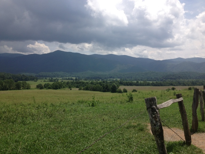 Cade's Cove view