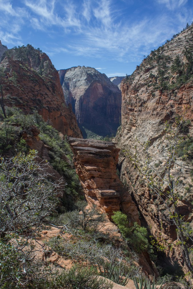 Zion 2017 Day 2 (7 of 32)
