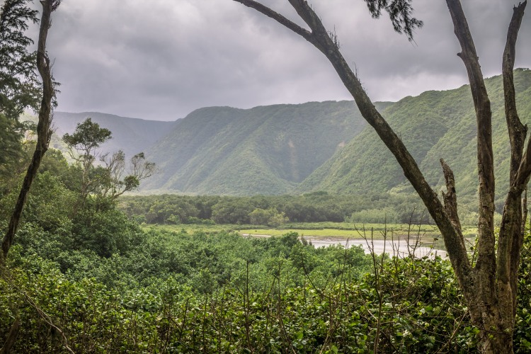 Polulu Valley (1 of 1)-2