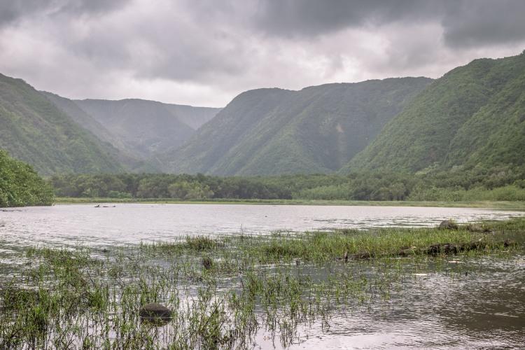 Polulu Valley (5 of 11)